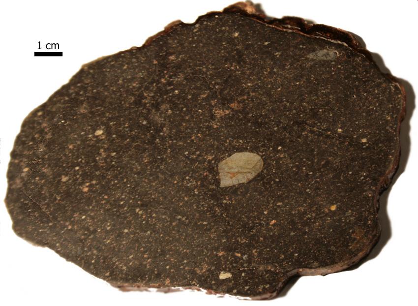 хной для фото метеорита царев киса, если кушать